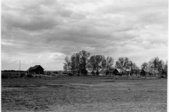 дер. Деделево, лето 1942 г.